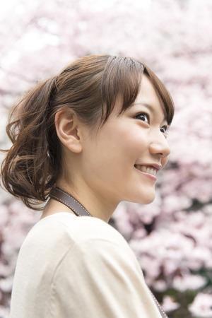 admire: Women admire the cherry blossoms