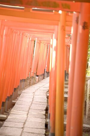 torii: Torii shrine