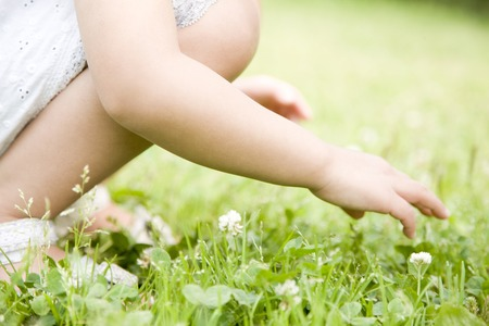 kindergartener: Girl picking flowers Stock Photo