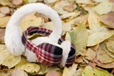 earmuff: Earmuffs and fallen leaves