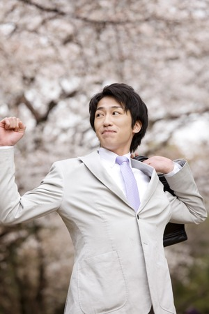 newcomer: Businessman walking under the cherry tree