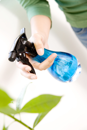 estrange: The hand of estrange people woman to plant Stock Photo