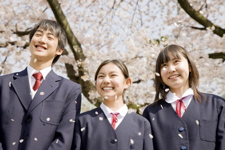 Junior high school students men and women are laughing under the cherry tree Stock Photo