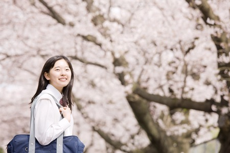 10's: Middle school girls are laughing under the cherry blossoms Stock Photo