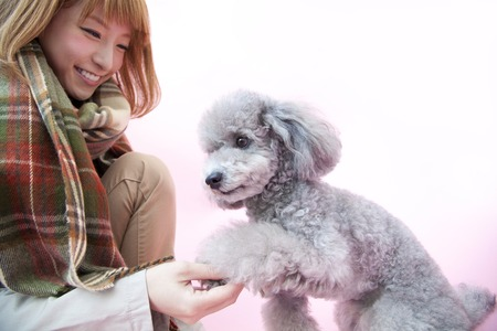 pleasure craft: Woman to be your hands to toy poodle