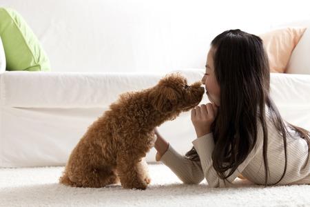 Girl Kawaigaru a Toy Poodle