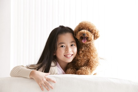 Toy Poodle and smile girl Banque d'images