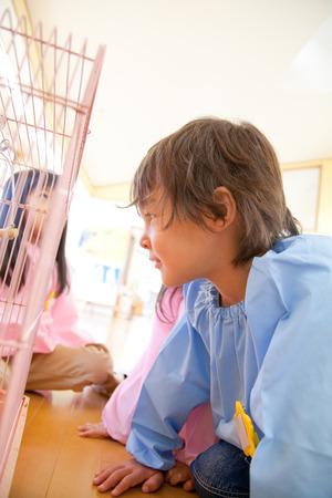 kindergartener: Kindergartener stare birdcage Stock Photo