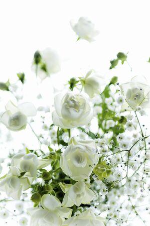 radiancy: White Rose haze grass vase vase Stock Photo