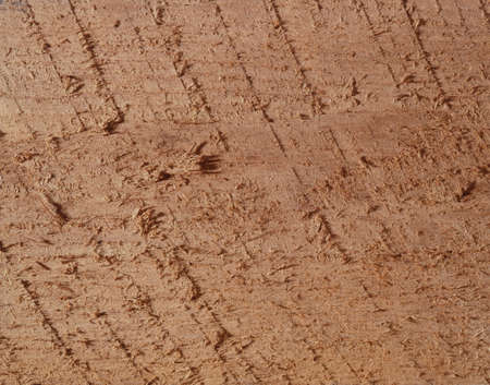 circunstancia: Wood cutting surfaces