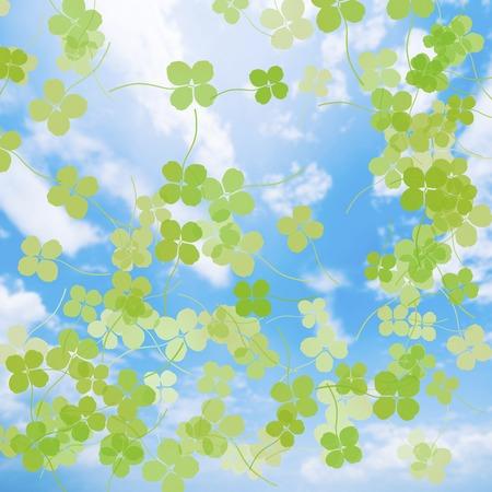 空の四つ葉のクローバーに 写真素材