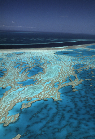 great barrier reef: Great Barrier Reef Stock Photo