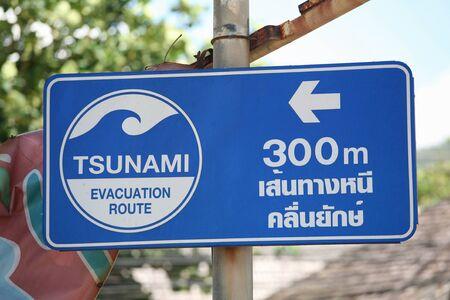 tsunami: Tsunami warning signs