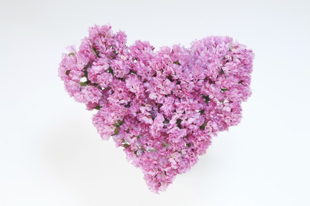 scattered in heart shaped: Heart bouquet Stock Photo