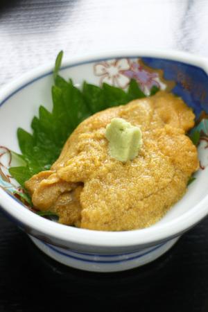 urchin: Raw sea urchin