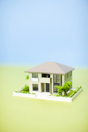 scaled down: Ideal home Stock Photo