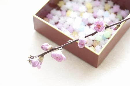 桃の花と紙吹雪 写真素材