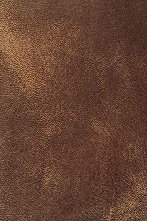 Leather 写真素材