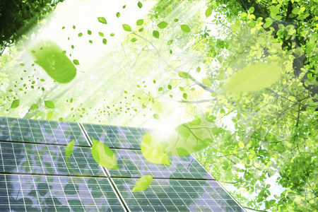 Solar panels and young leaves Stock Photo