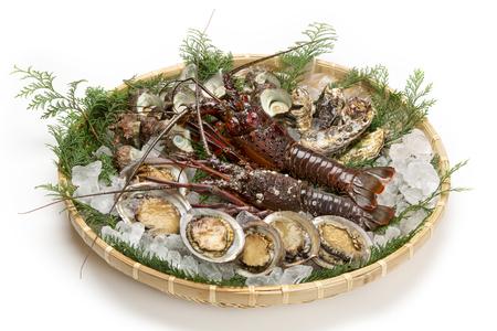 オマール海老と魚介類 写真素材