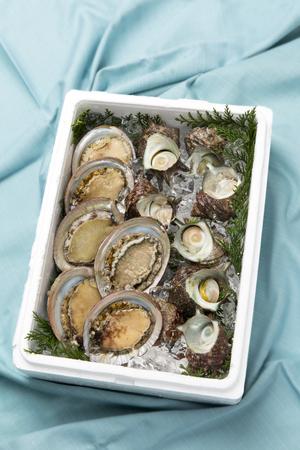 shellfish: Gift of fish and shellfish Stock Photo