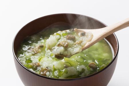 alga marina: Bud algas y las gachas de almeja Foto de archivo
