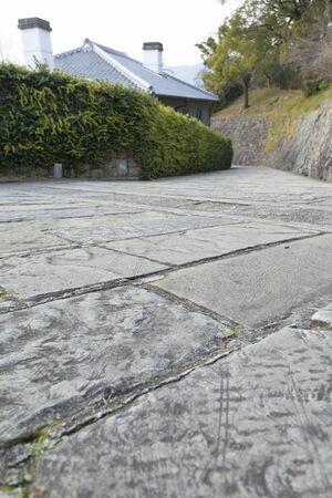 flagstone: Netherlands slope Flagstone