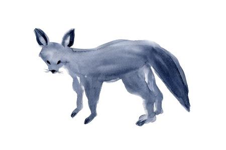living organism: Fox