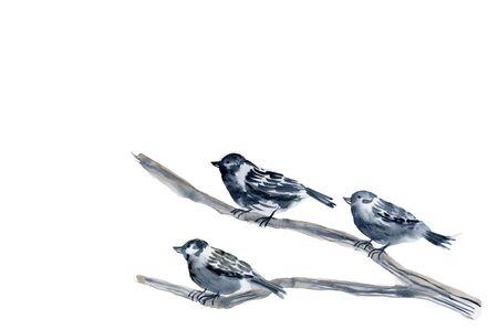 sumi: Sparrow