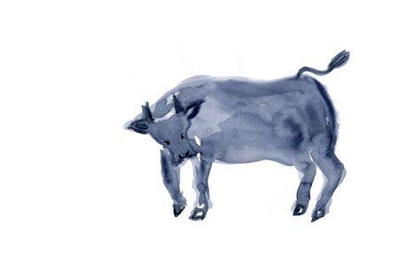 living organism: Cow