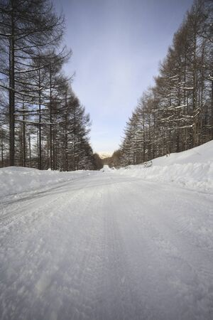 snowcovered: Snow-covered road of car Yamatakahara