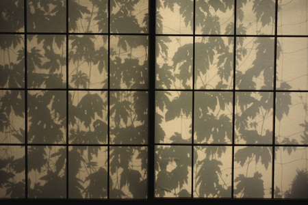 window shade: Silhouette of bitter gourd floating on the shoji Stock Photo