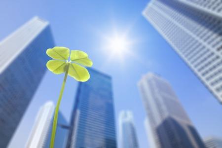 4 つ葉のクローバーと新宿ビルディング グループと太陽 写真素材