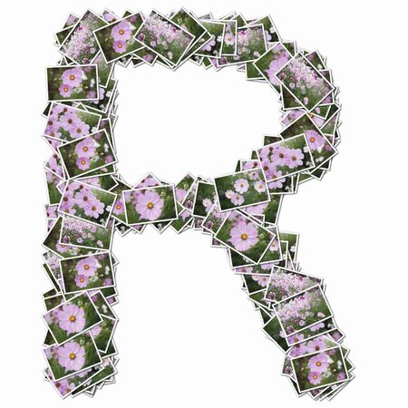 r image: Uppercase letters with pictures of flowers