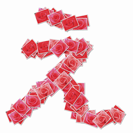 huh: Rose flower in hiragana character.
