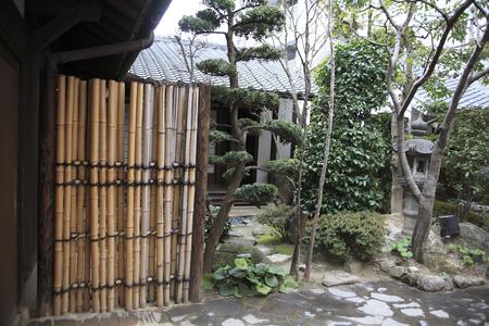 spot: Spot garden