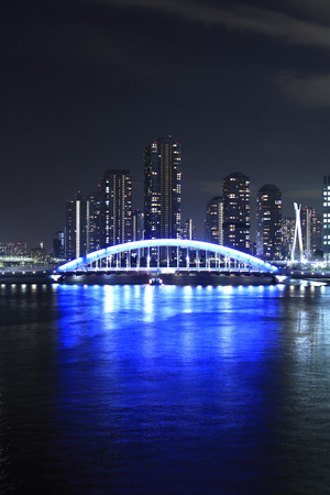 permanence: Night view of permanence Bridge and the River City 21
