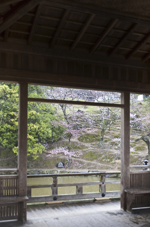 nara: Ukifune-do of Nara Park