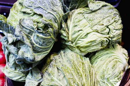 pesticide free: Cabbage Stock Photo