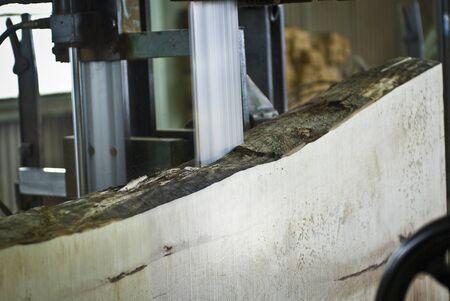 lumber mill: I saw mill