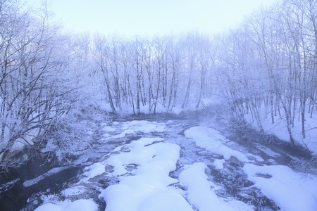 severe: Severe winter of the river Stock Photo