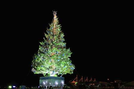 provincial tourist area: Christmas tree