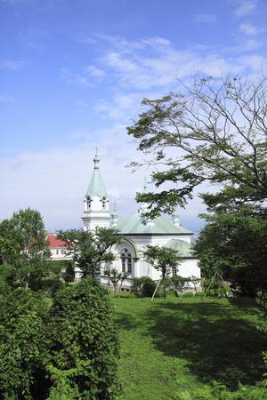 the orthodox church: Orthodox Church