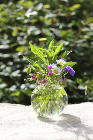 early: Early summer flower arrangement Stock Photo