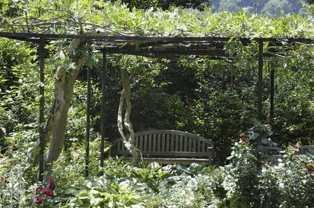 garden bench: British garden bench