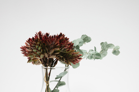 artificial flower: White background of the artificial flower arrangements Stock Photo