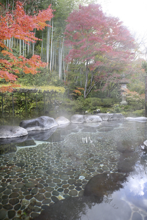 vapour: Autumn leaves and hot springs