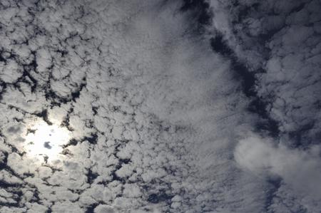 lingering: Lingering summer heat is