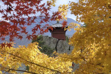 northeast: Autumn Temple