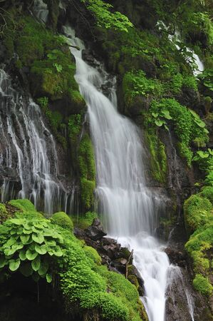 piedmont: Waterfall